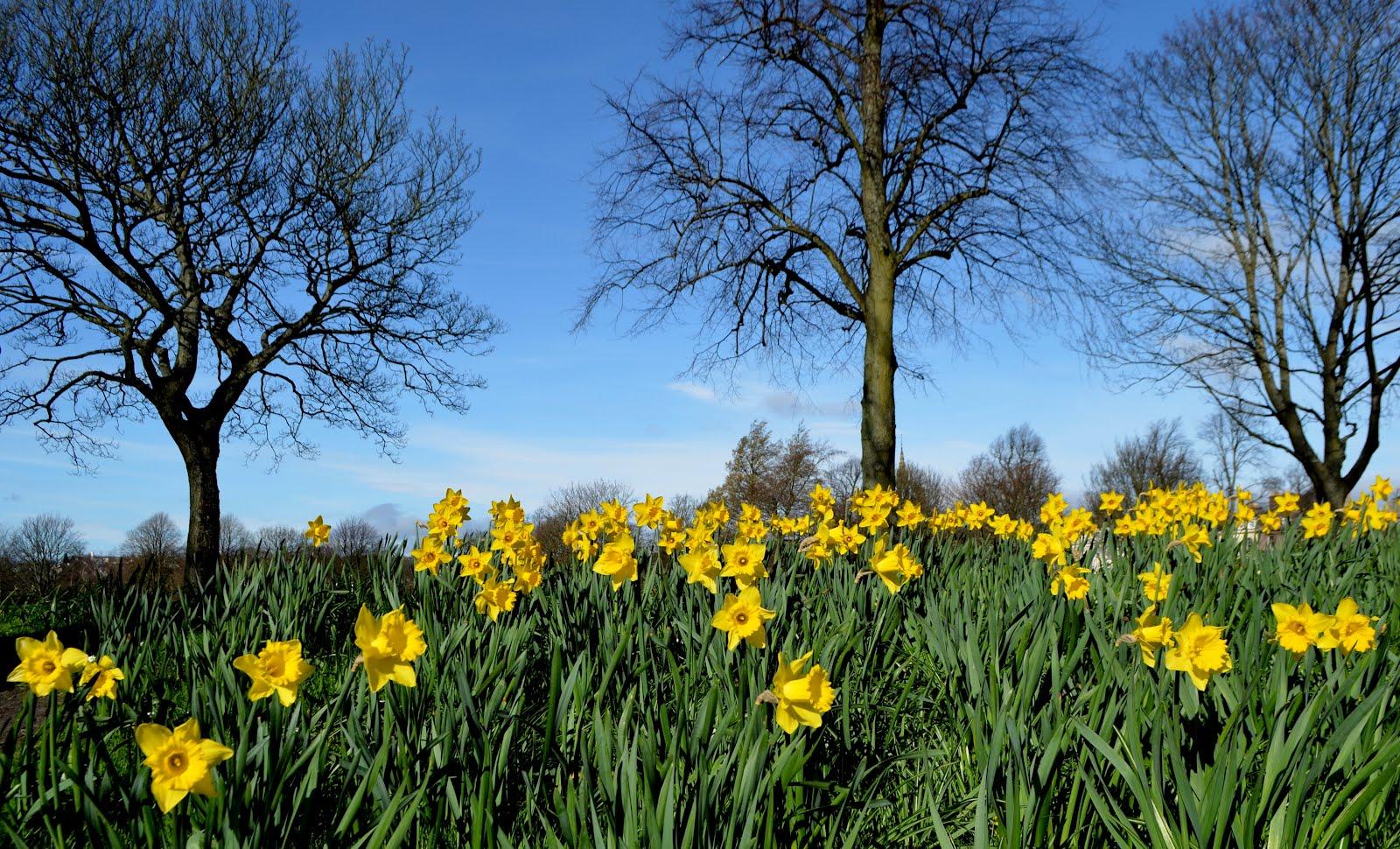 siti di incontri Perthshire Scozia